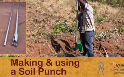Online training: Making and Using a Soil Punch (Aug 2016)